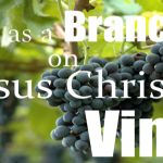 Living on Jesus Christ's Vine